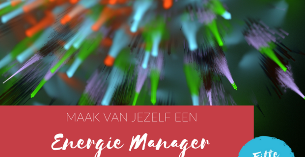 Ben jij een energie manager?